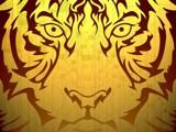 tiger by groo2k, Illustrations->Digital gallery