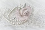 Pearls & Lace by LynEve, photography->still life gallery