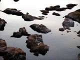 Riverfront Park: Stones in the Congaree by Flurije, photography->shorelines gallery