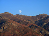 Rising Fall Moon by hirschikiss22, photography->nature gallery