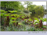 an English country garden........... by fogz, Photography->Landscape gallery