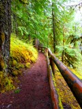 Path to Nowhere. by pinkheythur, photography->landscape gallery