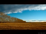 Stuble by d_spin_9, Photography->Landscape gallery