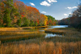 a stream near yorktown, virginia by jeenie11, Photography->Landscape gallery