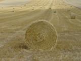 Straw rolls in France by rjh, Photography->Landscape gallery