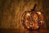 Happy Halloween Season by ShannonChristine, photography->still life gallery