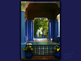 the gardens of Majorelle (2)................... by fogz, Photography->Architecture gallery