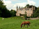 Château de la Motte by Dehli, photography->castles/ruins gallery