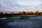 Winter's paint pallette by fogz, Photography->Landscape gallery