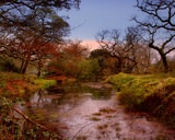 MARSHLAND by LANJOCKEY, Photography->Water gallery