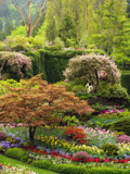 Eden by CanoeGuru, Photography->Landscape gallery