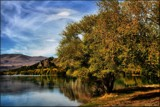 Lakeside - early Autumn by LynEve, photography->landscape gallery