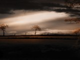 Dark Eden by Cain, Photography->Landscape gallery