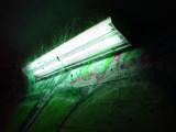 Webbed light by Zeniac, photography->city gallery