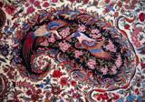 Persian Rug by soosool, illustrations gallery