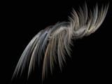Feather for Pleasure by doubleheader, Abstract->Fractal gallery