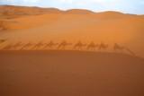 Saharan Shadows by lindala, Photography->Landscape gallery