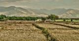 Farm and Hills - Luzon West Coast. by Mythmaker, photography->landscape gallery