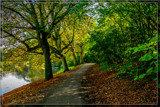 Path Along The Creek 2 by corngrowth, photography->landscape gallery