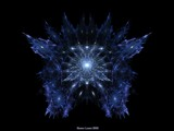 Little Wing by FractalsByRee, abstract->fractal gallery