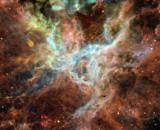 Tarantula by philcUK, space gallery