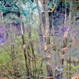 Animal Spirits by ahimsaka, abstract->surrealism gallery