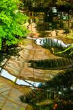 Garden Mirror by mikerkim, photography->gardens gallery