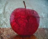 Big Red by rvdb, photography->still life gallery