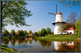 Typical Dutch 2 by corngrowth, photography->mills gallery