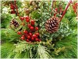 Last Holiday Greenery by trixxie17, holidays->christmas gallery