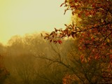 Late November Morning by CDHale, photography->landscape gallery