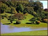 "Sansho-En, or ""The Garden of Three Islands,"" by trixxie17, photography->gardens gallery"