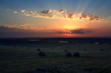 Birds & Bales - Wetlands & Wheat by Nikoneer, photography->sunset/rise gallery
