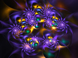 Wildflowers by razorjack51, Abstract->Fractal gallery