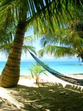 Hammock In Paradise by rgates88, Photography->Shorelines gallery