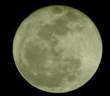 Image: Full moon tonite