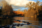 Honeyrun Covered Bridge by Jahlela, Photography->Bridges gallery