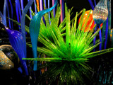 more chihuly magic by jeenie11, Photography->Sculpture gallery