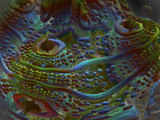 Fantasyland by Joanie, abstract->fractal gallery