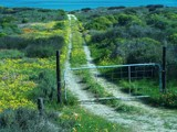 Namakwaland Tour #1 - Entrance to God's Garden by SusanVenter, Photography->Landscape gallery