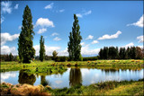 Peaceful Pond by LynEve, photography->landscape gallery