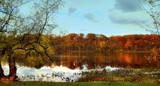 Autumn Rain #2 by tigger3, photography->manipulation gallery