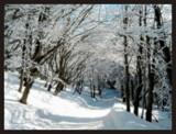 Wake up! by ekowalska, Photography->Landscape gallery