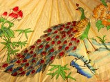 Chinese Peacock Umbrella by jojomercury, Illustrations->Traditional gallery