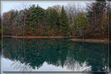 Pearson Metropark by Jimbobedsel, photography->landscape gallery