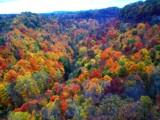Spencer Gorge by Jeffo, photography->landscape gallery