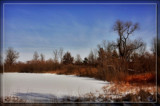 Frozen Marsh by Jimbobedsel, photography->landscape gallery