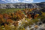 near montezuma well by jeenie11, Photography->Landscape gallery