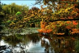 Autumn at Mirror Lake by LynEve, photography->landscape gallery