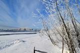 """Frosty & Crisp Morning Walk"" by icedancer, photography->bridges gallery"